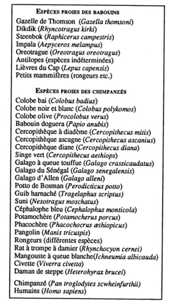 Ducros 1992 espèces proies des chimpanzés et baboins