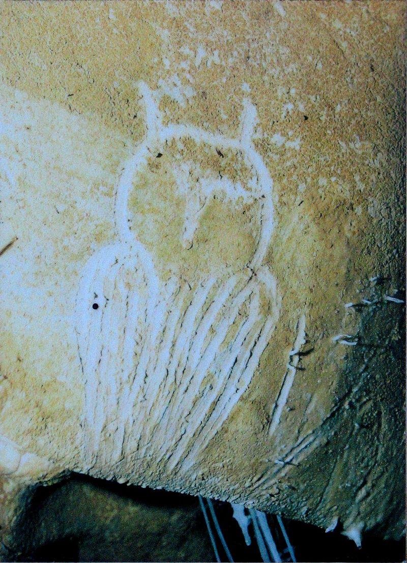 Owl_engraving,_Chauvet_Cave_(museum_replica)