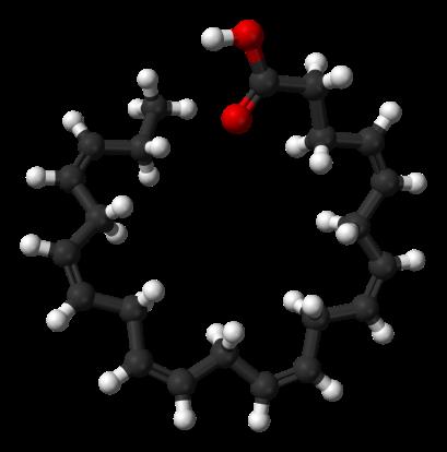 Molécule de DHA.png