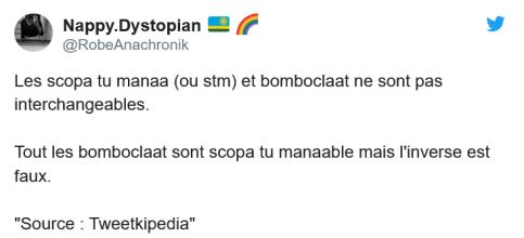 Bomboclaat et scopa tu manaa