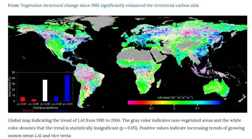 Chen et al., 2019 reforestation
