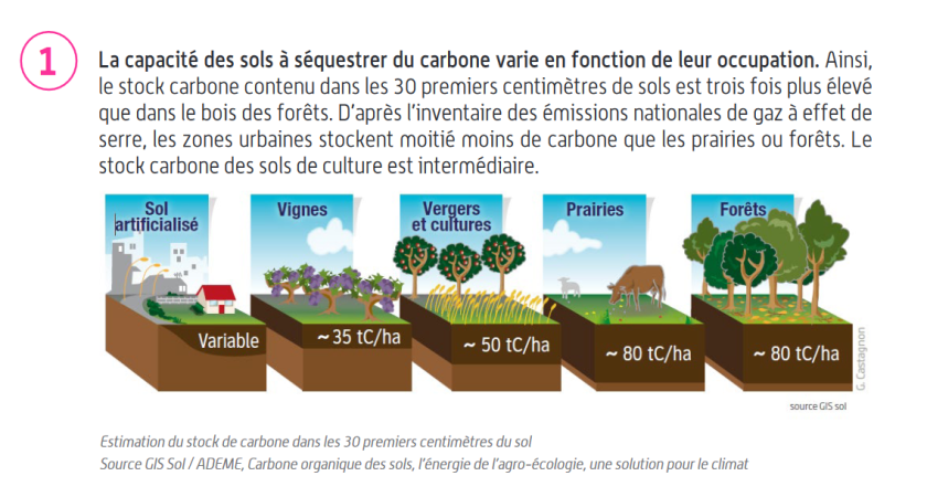 Changement occupation des sols puits de carbone CEREMA