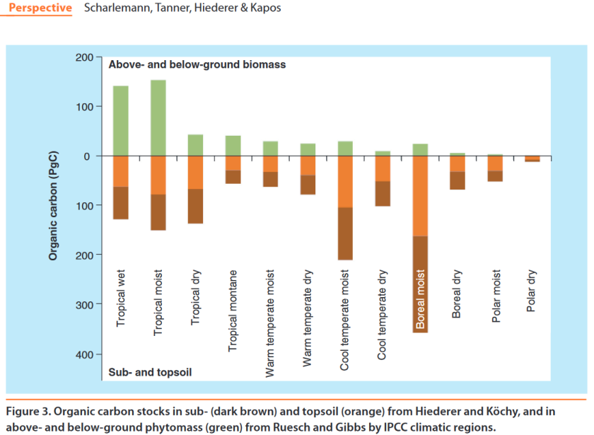 Stocks carbone aérien et souterrain
