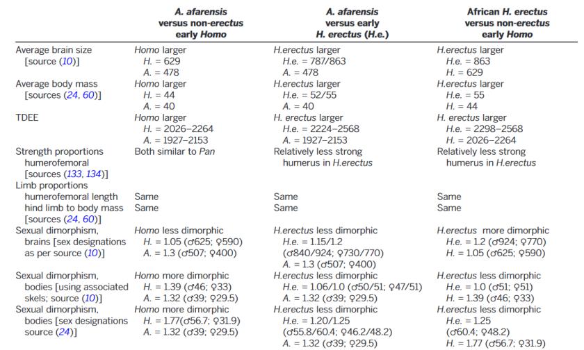 Dimorphisme australopithèque et early hom Anton 2014