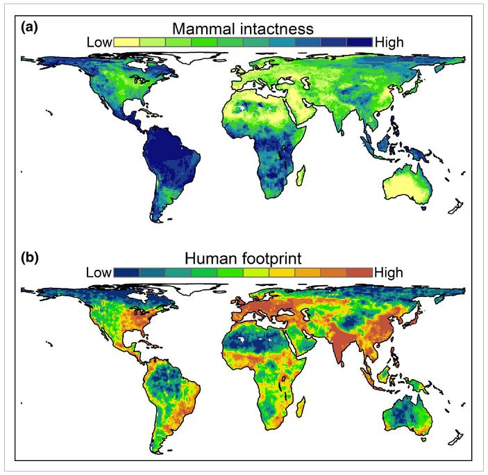 Mammal intactness belote et al 2020